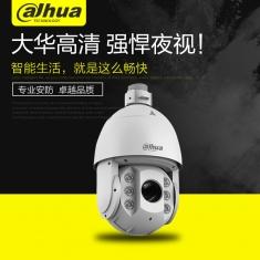 大华DH-SD6C84E-GN高清网络红外400万30倍变倍H.265监控球机